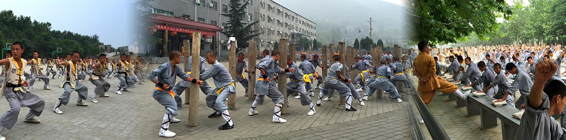 嵩山少林寺内文武学校多年来向全国各地输送教练员,保安,保镖,武警